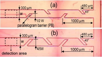 Microscopic images of microfludic mixer with parallelogram barriers in mixing channel [48].