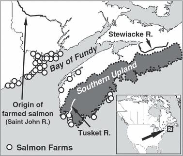 Map Of The Location Of Atlantic Salmon Study Population Openi - Salmon location map us