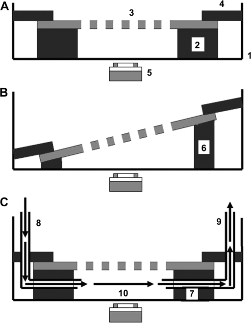 Schematic Diagrams Of Static Culture Modules A I B Open I