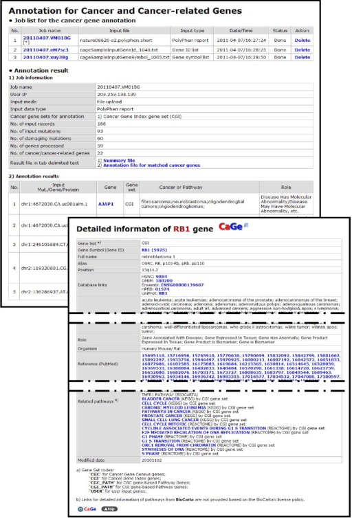 Cancer gene annotation results page of CaGe web interface.