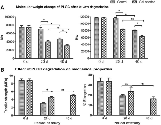 Data on in vitro degradation of scaffold. (A) Change in molecular weight (weight average [Mw] and number average [Mn]) of polymer suspended in culture medium with or without fibroblast after different periods. (B) Tensile strength and percent elongation of hybrid scaffolds suspended in culture medium with or without fibroblast after different periods. Elongation was higher for cell-grown samples but was not statistically significant. Mechanical testing of cell-free scaffolds was not possible after 40 d of immersion in the medium because they were found to have lost the required dimension due to shrinkage. Data presented is average±SD (n=5). *p<0.05. The periods of analysis are marked in the x-axis.