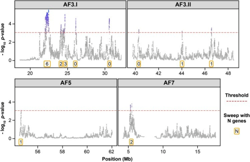 HapFLK statistics profile inside each AF QTL region. The associated name of each QTL region is given at the top of each graph. Statistics are written as the -log10 of the p-value of the HapFLK test; for each sweep, the number of genes it contained is indicated in an orange box. Some QTL (AF3.I and AF3.II) colocalized with several selective sweeps, whereas others (AF5, AF7, and BMWT1) colocalized with a single selective sweep. The number of genes included in a sweep ranges from 0 to 6.