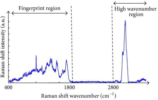 Raman spectrum of cervical cancer CaSki cell line. The variation of Raman shift wavelength is expressed in wavenumbers (cm−1) and can be observed along the X-axis whilst the intensity is represented along the Y-axis. The fingerprint and the high wavenumber (HW) regions of the spectrum are indicated by the arrows.
