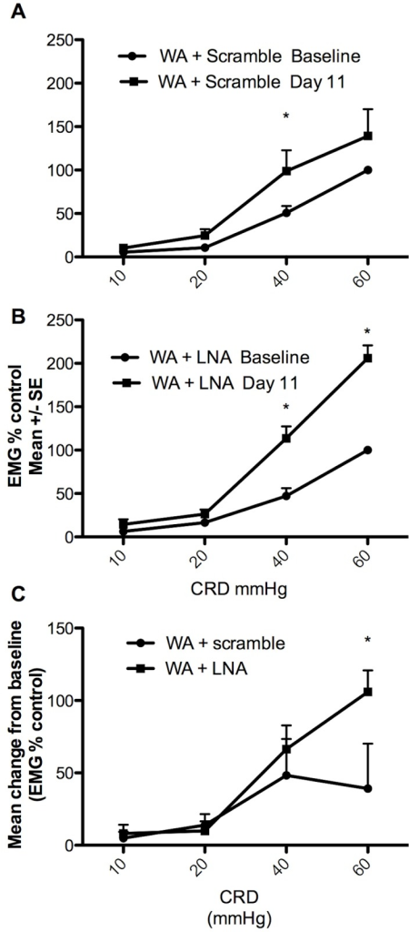 Effect of the miRCURY LNA mir17-5p inhibitor or scramble control on stress-induced visceral hyperalgesia.A) EMG response to graded CRD at baseline and 24 hours following the 10th stress session showed overall increase of the EMG response to CRD with significant increased at 40 mmHg consistent with stress-induced visceral hyperalgesia n = 8 *P<0.05 two-way ANOVA followed by Bonferroni post test. B) Stressed rats treated with the LNAmir17-5p inhibitor exhibit increased EMG response to CRD at day 11 compared with baseline indicating visceral hyperalgesia n = 6, *P<0.05 two-way ANOVA followed by Bonferroni post test. C) The mean change from baseline was significantly higher in stressed rats treated with the LNAmir17-5p inhibitor (n = 6) compared with stressed rats treated with the control scramble (n = 8) indicating an exacerbation of visceral sensitivity *P<0.05 two-way ANOVA followed by Bonferroni post test.