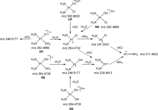 Proposed fragmentation mechanism for CP and its metabolites M1-M4.