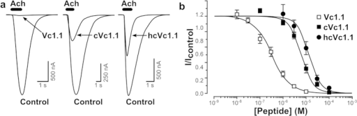 Activity of hcVc1.1 at the α9α10 nAChR.(a,b). (a) Superimposed representative traces of ACh (10 μM)-evoked inward currents obtained in the absence (control) and presence of 1 μM Vc1.1, cVc1.1 and hcVc1.1 applied to hα9α10 nAChRs expressed in oocytes. (b) Concentration-response curves for inhibition of hα9α10 currents by Vc1.1, cVc1.1 and hcVc1.1. Data points represent relative peak current amplitudes (I/Icontrol), mean ± SEM; n = 3–7. IC50 values obtained for Vc1.1, cVc1.1 and hcVc1.1 are 320 nM, 6 μM and 13 μM, respectively.