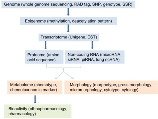 Omics data that could be used in the pharmacophylogeny inference.Abbreviations: RAD, restriction site associated DNA; SNP, single nucleotide polymorphism; SSR, simple sequence repeat; EST, expressed sequence tag.