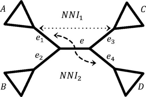 Visualization of NNI. Species tree T and the two NNIs around central edge e. NNI1 is obtained by exchanging subtrees below edges e1 and e3, while NNI2 by exchanging subtrees e1 and e4. NNI, nearest neighbor interchange.