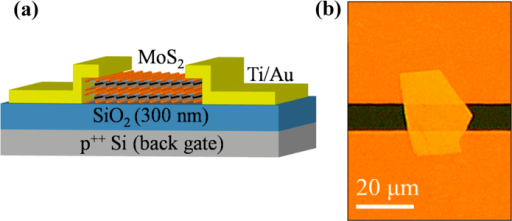 (a) Schematic representation and (b) Optical image of the field-effect transistor based on multilayer MoS2.