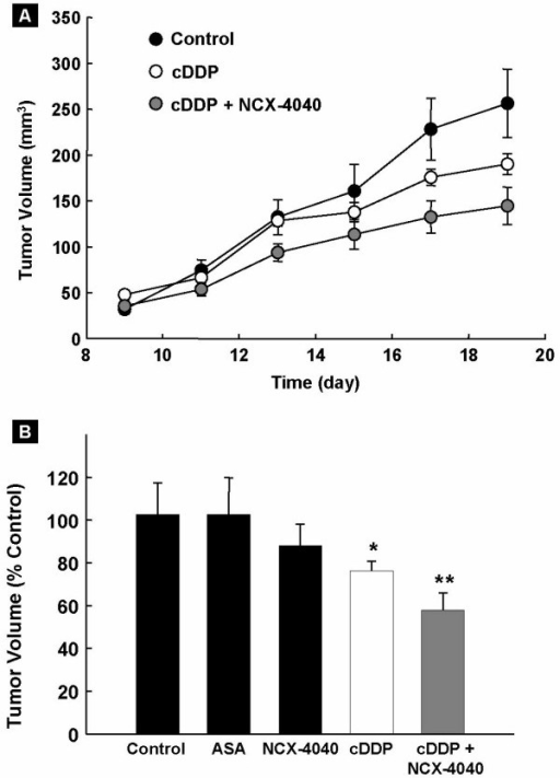 Effect of NCX-4040 and/or cisplatin (cDDP) on the growth volume of human ovarian cancer xenograft tumor in mice. Groups of mice (4–6 per group) were inoculated with the A2780 cDDP human ovarian cancer cells in the upper portion of hind leg. Seven days after inoculation, two groups were injected daily (i.p.) with NCX-4040 (5 mg/kg), of which one group received a single i.p. injection of cisplatin on day 11 (8 mg/kg). The third group received single dose of cisplatin on day 11 (8 mg/kg). One group received aspirin (5 mg/kg, daily). Control group received vehicle. (A) Tumor growth curve for control, cisplatin, and combination of treatment (NCX-4040 and cisplatin). (B) Tumor growth volume data (mean ± SE, expressed as percent of control group) on the 19th day after injection of cancer cells. *p < 0.05 compared to control group. **p < 0.05 versus cDDP group. NCX-4040 and aspirin (ASA), a metabolic product of NCX-4040, showed no significant effect. The results show that pretreatment with NCX-4040 was effective in enhancing the efficacy of cisplatin in inhibiting the growth of cisplatin-resistant ovarian cancer xenografts in mice.