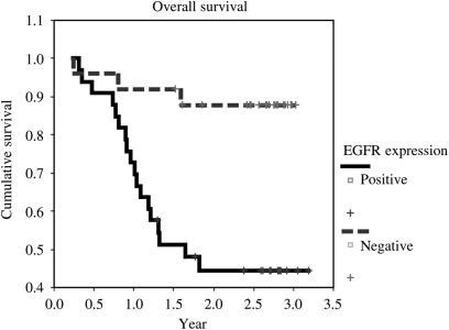 Kaplan–Meier overall survival curves according to EGFR overexpression.