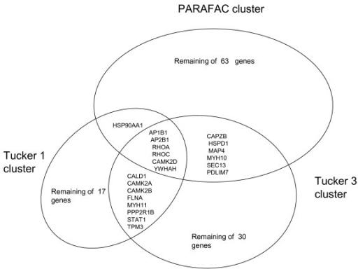 Venn Diagram Of K Means Clustering Results For All Thre Open I