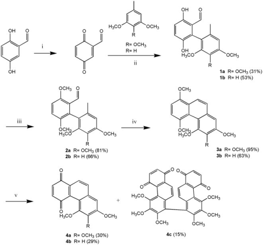 Synthetic procedure of phenanthrene derivatives.Reagents and conditions: (i) DDQ, benzene, RT. (ii) TFA, ether, RT. (iii) Me2SO4, K2CO3, acetone, reflux. (iv) P4-tBu, benzene, 140°C. (v) AgO, 6 N HNO3, acetone, 60°C.