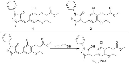 Structures of relevant compounds.Panel A. Structure of SJ-172550 (1) and a non-reactive analog (2). Panel B. The potential mechanism of covalent adduct formation.