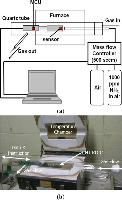CNT sensor measurement system. (a) Schematic diagram showing the concept and operation of the temperature-controlled measurement system. (b) Photograph of the test equipment.