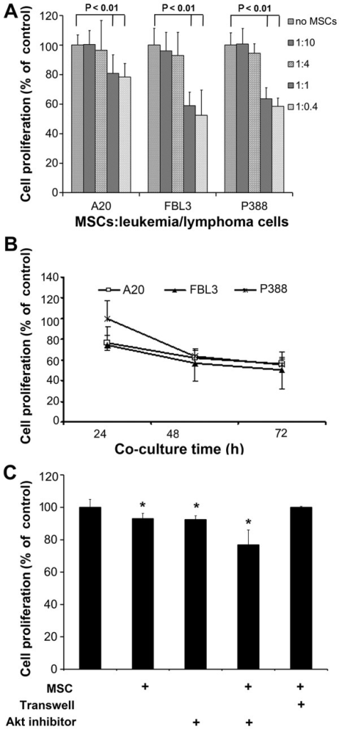Mesenchymal stem cells (MSCs) inhibit the proliferation of malignant cells of various hematopoietic origins. (A) The cells (2×104; A20 B lymphoma, FBL3 erythroleukemia and P388 acute lymphocytic leukemia cells) were cultured in the presence or absence of the indicated numbers of MSCs in 96-well plates for 48 h. Cell proliferation was assessed using a Counting kit-8 (CCK-8) assay during the final 4 h of culture. (B) The leukemia and lymphoma cells (2×104) were cultured in 96-well plates in the presence of 2×104 MSCs for the indicated periods of time. (C) A20 cells (2×104) were cultured in 96-well plates. MSCs (2×104) were added directly to the A20 cells or on the other side of a Transwell insert, and the plates were co-cultured for 48 h in the presence or absence of an Akt inhibitor (5 µM). A20 cell proliferation was measured using a CCK-8 assay during the final 4 h of culture. The results are shown as a percentage of cell proliferation in comparison with control lymphoma cell proliferation. Results are expressed as the means ± SD of 3 independent experiments. *P<0.05 indicates statistical significance when compared with the control group.