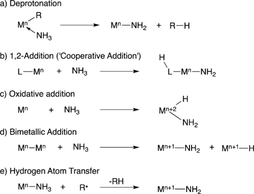 Transition Metal Mediated Ammonia Activation