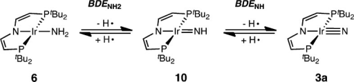 HAT Reactions from Amide 6 to Nitride 3a via Proposed Imide Intermediate 10