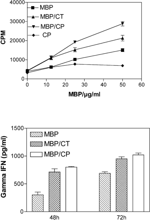 Effect of infection C. pneumoniae and C. trachomatis on the development of an immune response to MBP. SJL/J female mice were immunized with MBP and infected with chlamydial organisms as described in Fig. 1 A. (Top) Proliferative response of splenocytes to MBP in infected and uninfected mice. The data represents the mean value and SD (standard deviation) of [3H]thymidine uptake (CPM) of triplicate determination at each point. (Bottom) IFN-γ production in culture supernatants in response to MBP. The levels of IFN-γ in supernatants were measured by ELISA at 48 and 72 h, respectively. The data represents the mean and standard value (SD) of triplicate determinations at each time point from a representative three experiments (CT, C. trachomatis; CP, C. pneumoniae).