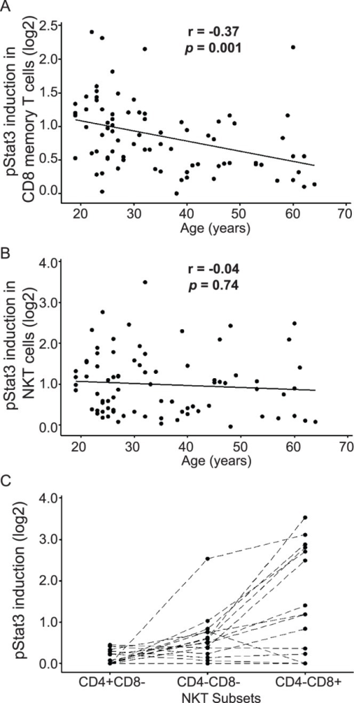 Age-related correlation and subset analysis for IL-23-mediated pSTAT3 induction in CD8+CD45RO+ memory T cells and CD3+CD56+ NKT cells.Peripheral whole blood was stimulated with 100 ng/ml IL-23 for 15 minutes and pSTAT3 induction was assessed by phospho-flow assay. IL-23 responsiveness was calculated as the log2 ratio of GMFI of pSTAT3 in stimulated vs. unstimulated samples. Age is significantly associated with IL-23 responsiveness in (A) CD8+CD45RO+ memory T cells (n = 82, r = −0.37, p = 0.001), but not in (B) CD3+CD56+ NKT cells (n = 82, p = 0.50). (C) IL-23 responsive NKT cells are confined to the CD4−CD8+ and CD4−CD8− subsets (n = 20).