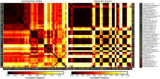Correlation matrices for odor-evoked responses in the AL and LH.Complete correlation matrices for calcium activity patterns of OSNs in the AL (left) and iPNs in the LH (right). The odors are arranged according to single linkage clustering of the AL activity patterns. Heatmap color-code refers to the correlation distance scale bar below each matrix. Odor letters are color-coded according to hedonic valence; 10−6 RI values are labeled in grey (complete list right hand).DOI:http://dx.doi.org/10.7554/eLife.04147.018