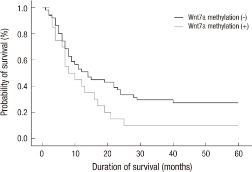 Kaplan-Meyer survival curve of the patients according to the Wnt7a methylation status. Black stands for Wnt7a methylation negative, and gray stands for positive. Cox regression analysis including sex, age, smoking status, stage, and E-cadherin expression, showed no significant correlation between Wnt7a methylation and survival.