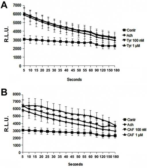 Ach induced NO production by HUVECs.Ach stimulation increased NO release, revealed by chemiluminescence. TYR 1μM and 100nM did not affect Ach-induced NO release (Fig. 1A); CAF enhanced Ach-induced NO release in a dose-dependent manner (Fig. 1B) (p<0.05 CAF vs. controls or vs. Ach at all time points considered). Results are expressed as average±1SD of 6 different experiments.