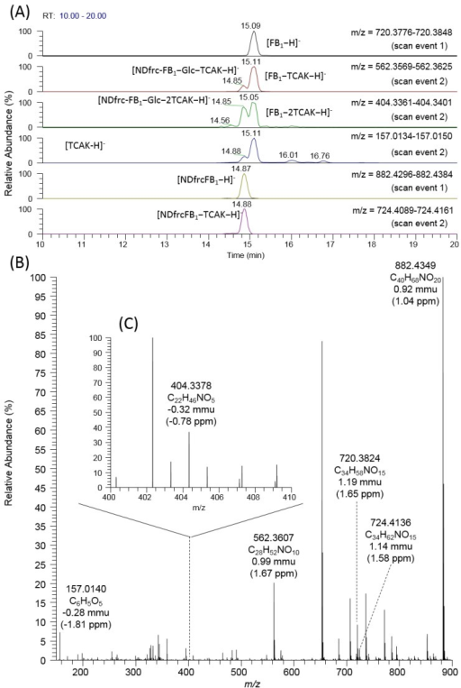 Detection and identification of NDfrc-FB1. Mass chromatogram with scan results (scan events 1 and 2) (A); full mass spectrum obtained at 14.87 min (scan event 1) (B); and mass range magnification of full mass spectrum (m/z: 400–410) obtained at 14.87 min (scan event 1) (C).