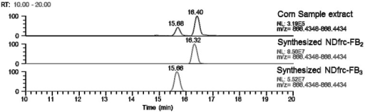Chromatograms of NDfrc-FB2 and NDfrc-FB3 in corn powder extract in comparison with the chemically synthesized species (scan event 1).