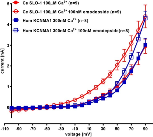 The effect of emodepside on voltage-activation of Ce SLO-1 and hum KCNMA1.Analysis of the current-voltage relationship of the data sets shown in Fig 6 and Fig 7 for Ce SLO-1 and hum KCNMA1 whole cell currents expressed in HEK293 cells before and after treatment with emodepside (100nM). Ce SLO-1 currents were recorded before and 12 min after emodepside application. Hum KCNMA1 currents were recorded before and 5 min after emodepside application. Membrane potential was held at -60mV and stepped to between -100 and +90mV in 10mV increments for 50ms. Data points are the mean ± s.e.mean of n = 9 for Ce SLO-1 and n = 8 for hum KCNMA1. The amplitude of Ce SLO-1 currents in the presence of 100nM emodepside was significantly greater than currents recorded in the absence of emodepside between +20 and +90mV and for hum KCNMA1 was significantly greater than currents recorded in the absence of emodepside between +70 and +90mV; p<0.05; two-way ANOVA with Bonferroni post-hoc tests.