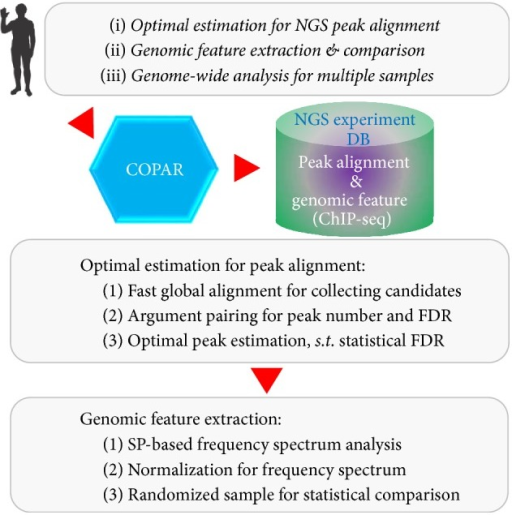Flowchart For Optimal Peak Alignment Estimation And Genomic Feature  Analysis With COPAR. The Package Can