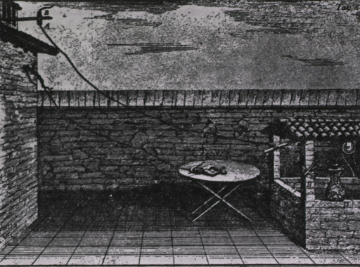 <p>Frog tissue experiment, using lightning rod of B. Franklin.</p>