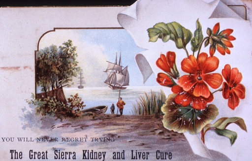 <p>As a blood purifier and enricher, Sierra Kidney and Liver Cure can be used to cure a variety of aliments.  Prepared from the juices of herbs grown in California.  Visual motif:  Explorers (&quot;...never regret trying&quot;) and the California Poppy.</p>