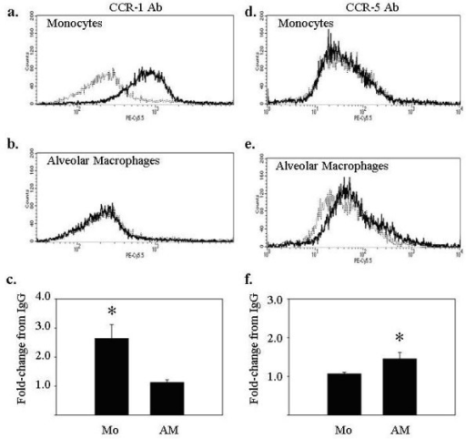 Peripheral blood monocytes and alveolar macrophages differentially express the CCL3 receptors CCR1 and CCR5. Freshly isolated monocytes and alveolar macrophages (5 × 105/condition) were assayed for surface expression of CCR1 (left panels) and CCR5 (right panels) using flow cytometry. (a) Monocytes expressed CCR1 but (d) not CCR5. For monocytes, the average fold-increase in median fluorescence over IgG when staining for (c) CCR1 was 2.37 ± 0.53 (*p < 0.05 versus IgG controls), and when staining for (f) CCR5 was 1.07 ± 0.04 (p > 0.05 versus IgG controls). Alveolar macrophages expressed (d) CCR5, but not (b) CCR1. For alveolar macrophages, the average fold-increase in mean fluorescence over IgG when staining for (c) CCR1 was 1.04 ± 0.04 (p > 0.05 versus IgG controls), and when staining for (f) CCR5 was 1.45 ± 0.17 (*p < 0.05 versus IgG controls). IgG isotype controls are shown (dashed lines). Data are representative of three independent experiments and graphs represent mean ± SEM.