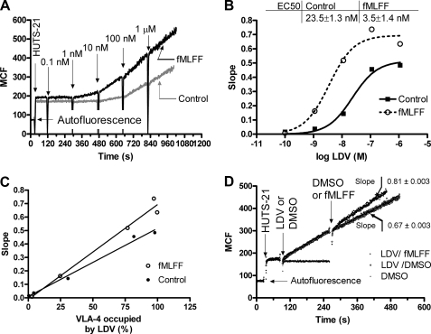 Kinetics of real-time binding of HUTS-21 antibodies to U937 cells, transfected with a non-desensitizing mutant of formyl peptide receptor. A, cells were treated with 100 nm of fMLFF (activated) or DMSO (vehicle) 5 min before the start of the experiment. The addition of HUTS-21 antibodies (first arrow) resulted in a rapid nonspecific binding of the antibody. Next, increasing amounts of LDV ligand were added. This induced binding of mAbs and resulted in different rates of antibody binding (compare slopes after LDV additions). B, absolute rates HUTS-21 binding (slopes of lines between sequential LDV additions calculated from panel A) plotted versus concentration of LDV in solution. The fit to the data was done using the sigmoidal dose-response equation with variable slope using GraphPad Prism software. Difference in EC50 values for resting and activated cells indicated the affinity change for LDV binding. A representative experiment of three independent experiments is shown. C, the slopes of the lines between sequential LDV additions, calculated from panel A, are plotted versus the fraction of VLA-4 occupied by LDV. The fraction of VLA-4 occupied by LDV was calculated using the one-site binding equation (Y = 100 × LDV/Kd + LDV, where Y is % of sites occupied, LDV is LDV concentration, and Kd is a previously published dissociation constant for resting and fMLFF activated states). D, the change in the rates of HUTS-21 binding can be seen in real-time. Cells pretreated with HUTS-21 antibodies (first arrow) were treated with a very high saturating concentration of LDV (10 μm, second arrow). Next, cells were activated by fMLFF. Control samples (DMSO) are also shown. Despite the fact that VLA-4 is completely saturated by LDV (10 μm is ∼1000-fold higher than Kd), the change in the slope of the line indicating HUTS-21 binding can be detected. A representative experiment of three independent experiments is shown.