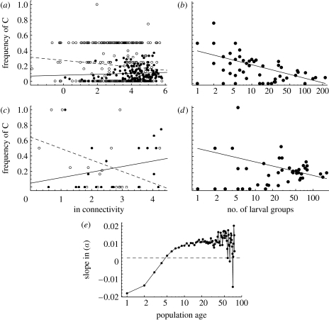 Comparison between predicted and observed spatial variations in the frequency of the C allele among local populations. (a,c) The frequency of C as a function of connectivity in newly established (open circles, dashed regression lines) and old populations (filled circles, solid regression lines) is given. (b,d) One snapshot of the frequency of C in sub-networks of habitat patches as a function of the pooled number of larval groups in the network at the time of sampling is shown. In the regression lines, the networks in which the C allele was absent (frequency 0) have been excluded. (a,b) Model predictions, (c) the empirical result from fig. 2b in Haag et al. (2005) and (d) an empirical result calculated with the data described by Hanski & Saccheri (2006) are shown. (e) How the slope in (a) depends on the age of the population (years since the population has been established), with data for 1500 independent snapshots is shown.