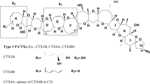 (a) General and specific structures of Pacific ciguatoxins (P-CTXs) (b) Structure of Caribbean ciguatoxins (C-CTX-1).