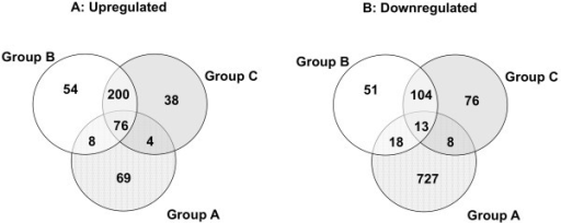 Venn Diagram of differentially expressed genes. Venn diagrams in GeneSpring GX were used to compare the lists of genes differentially expressed by 2-fold (p < 0.05) in each of the three experimental groups of animals. The diagrams show the number of genes that belong to each of the individual lists, the genes in common between each pair of lists and the genes in common among all three lists (in the center of the representation) for each type of regulation (A: Upregulation and B: Downregulation).