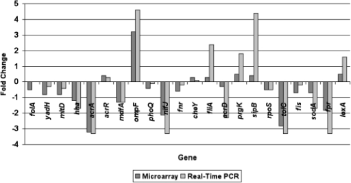 Comparison in expression ratios of 22 randomly selected genes between microarray and real time-PCR.The array fold-changes (in dark grey box) were based on averages from six biological replications. The fold differences (ΔCT) in expression levels of the genes tested using real time-PCR (in light grey box) were calculated from triplicate reactions against CT value of housekeeping gene (rrsG) of S. Typhimurium. acrA, tolC and ompF are genes showing significant difference (≥2-fold with P≤0.01) in microarray data.