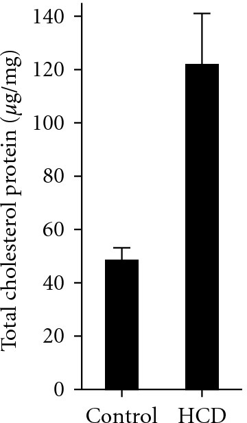 Total cholesterol levels in HCD-fed zebrafish larvae. Zebrafish larvae were fed control or high-cholesterol diets starting at the 5th dpf and continued for 14 days. Total cholesterol levels are expressed in μg cholesterol per mg protein of larvae lysate. Mean ± SEM from 6 independent experiments; 15–20 larvae were pooled for each experimental data point in each individual experiment. P < 0.005.