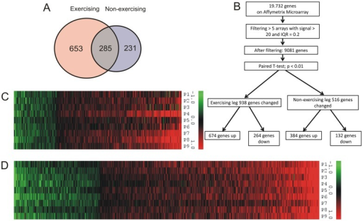 Exercise Mainly Causes Upregulation Of Gene Expression Open I