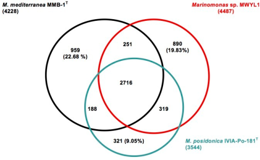 Venn Diagram Showing The Intersection Of Proteins Sets Open I