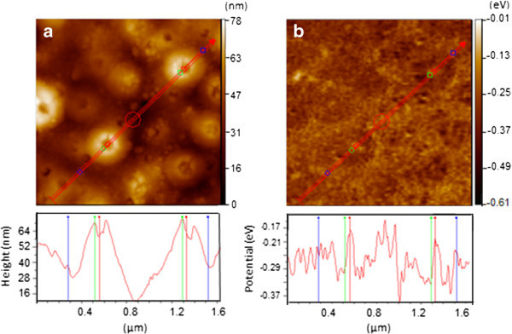 AFM image (a) and corresponding SKPM image (b) for surface of de-alloyed and then anodic oxidized Ti-Ni-Si specimen. Lower profiles of (a) and (b) are height from valley bottom and electrostatic potential for probe with 0 eV along red lines in upper images, respectively.