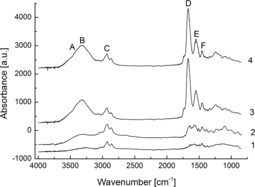 IRRAS spectra of theamino-functionalized CVD polymer (1), coatedwith non-cross-linked gelatin after washing (2), or coated with cross-linkedgelatin prior to washing (3) and after washing (4).
