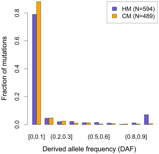 Derived allele frequency (DAF) spectra of mutations leading to motifs loss in the human branch.DAF of mutations affecting HM (purple bars) and CM (orange bars) along the human branch (green branch in Figure 1). Allele frequencies are extracted from 1000 genomes phase I, using all available populations [31]. Mutations count for each motif (F2 subset) is indicated (N).