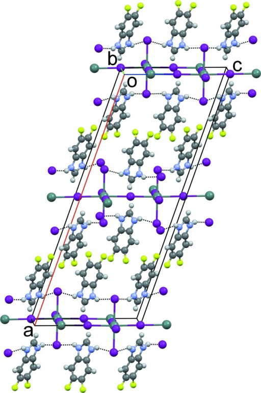 The crystal packing of compound (2) viewed along [010]. N—H⋯I hydrogen bonds are shown as dashed lines.