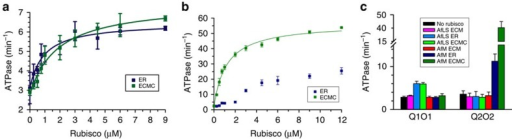 Inhibited rubisco complexes stimulate CbbQO ATPase activity.(a,b) ATPase activity assays of Q1O1 (a) and Q2O2 (b) (0.27 μM oligomer) in the presence of varying concentrations of inhibited AfLS (a) or AfM (b) complexes. (c) The ATPase stimulation is isoform specific. ATPase activity of 0.27 μM QO complex was measured in the presence (coloured bars) and absence (black bars) of the indicated rubisco complex (3 μM active sites). Error bars indicate the mean and s.d. of at least three independent experiments.