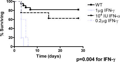 IFN-γ increases mortality in mice with inhalational anthrax.C57BL/6 mice were given 108 spores 34F2 intratracheally in 100 µl saline. IFN-γ or IFN-α at described doses was added to saline and administered with B.anthracis spores. Mice were subsequently monitored for survival. N = 5–7 mice/group.