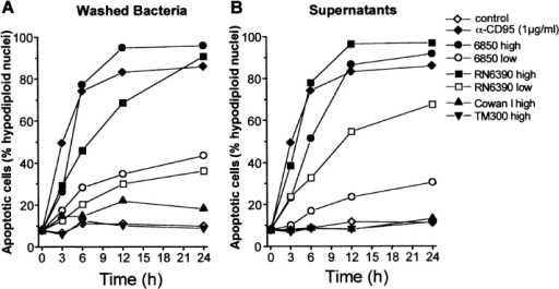 Both intact S. aureus cells and bacterial supernatants induce T cell apoptosis. Jurkat cells were incubated with live washed bacteria (A) or sterile-filtered supernatants of the same bacterial cultures (B). After the indicated times, the proportion of apoptotic cells was determined by flow cytometry. (A) Fresh suspensions of the indicated bacterial strains were added to Jurkat cells, resulting in a MOI of 30 (low) and 120 (high). Cells were incubated on ice for 2 h to allow sedimentation and then shifted to 37°C. Lysostaphin (20 μg/ml) was added to lyse and kill staphylococci. Lysostaphin without bacteria served as a negative control, whereas agonistic anti-CD95 was used as a positive control. (B) Fresh bacterial supernatants were added to Jurkat cells, resulting in a final concentration (vol/vol) of 0.1% (low) and 1% (high).