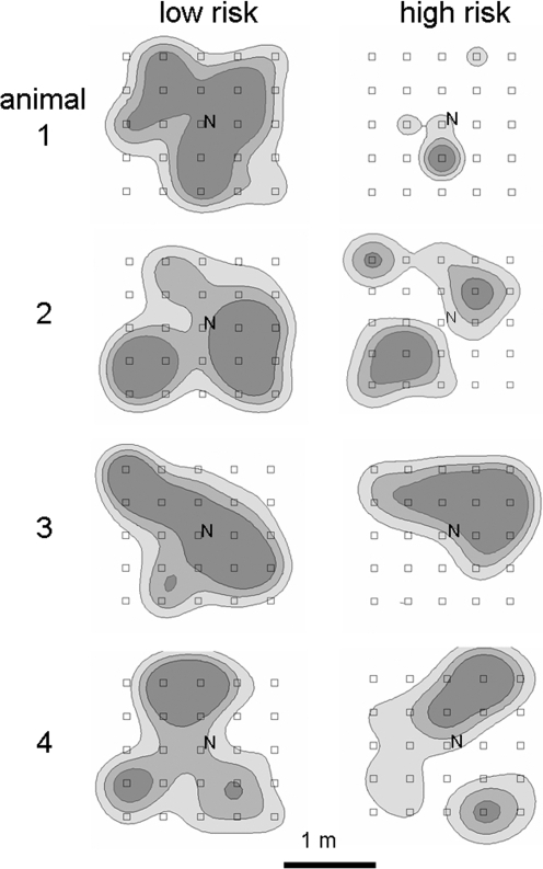 Spatial distribution of time investment.Four exemplary foragers (male bank voles) at their first day of foraging under safe (left) and risky (right) conditions. Investment is displayed as Kernel contour cores 50% (darkest), 75% (lighter) and 95% (lightest shade) based on location density (time investment) and distance between locations.